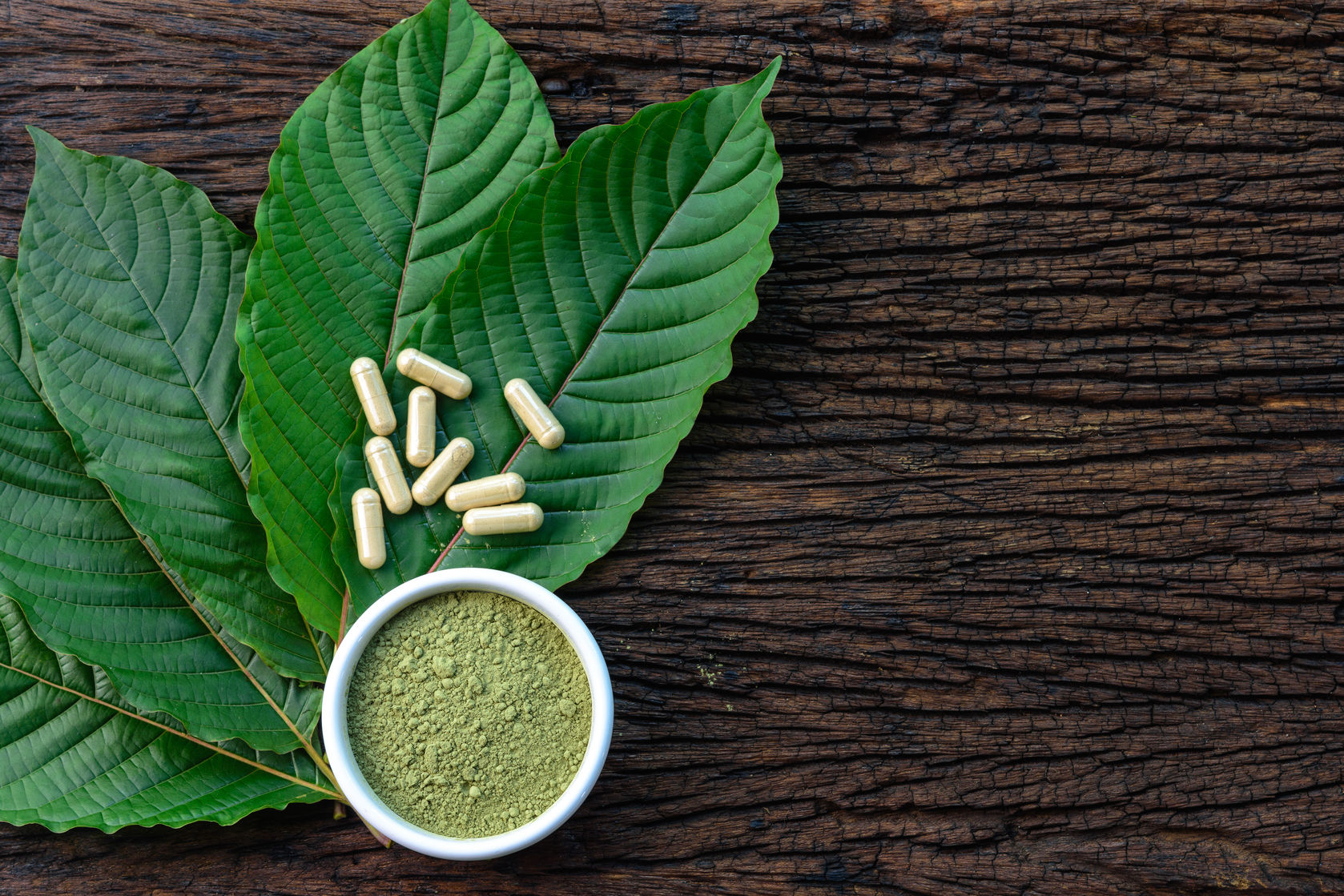 4 Caution Indicators Of Your Kratom Powder Death